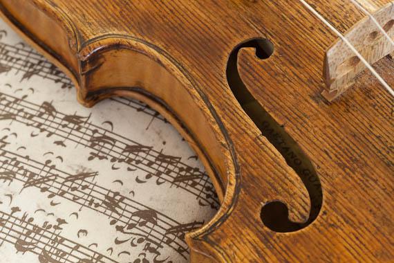 Gaetano Violine_05